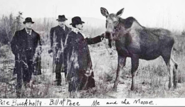 Three_men_pet_moose
